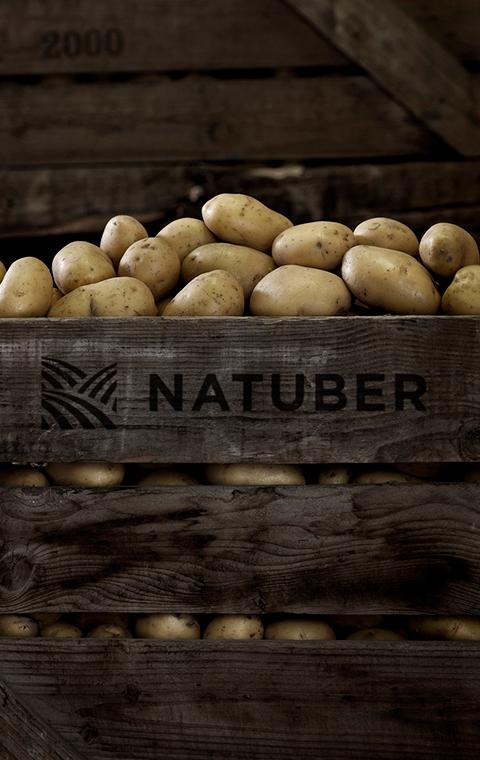 Natuber