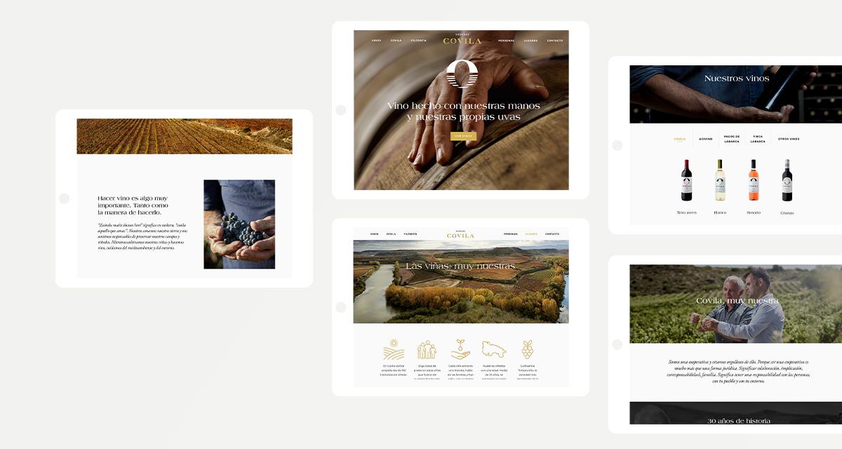 diseño-paginas-web-vitoria-gasteiz
