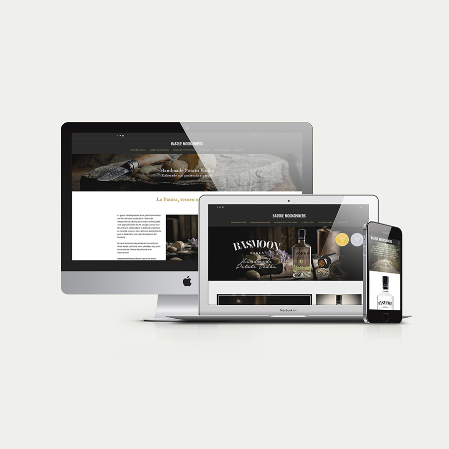 empresa-diseño-web-vitoria-c